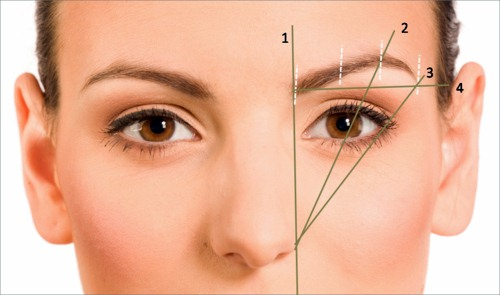 The Best Tips for Eyebrow Shaping